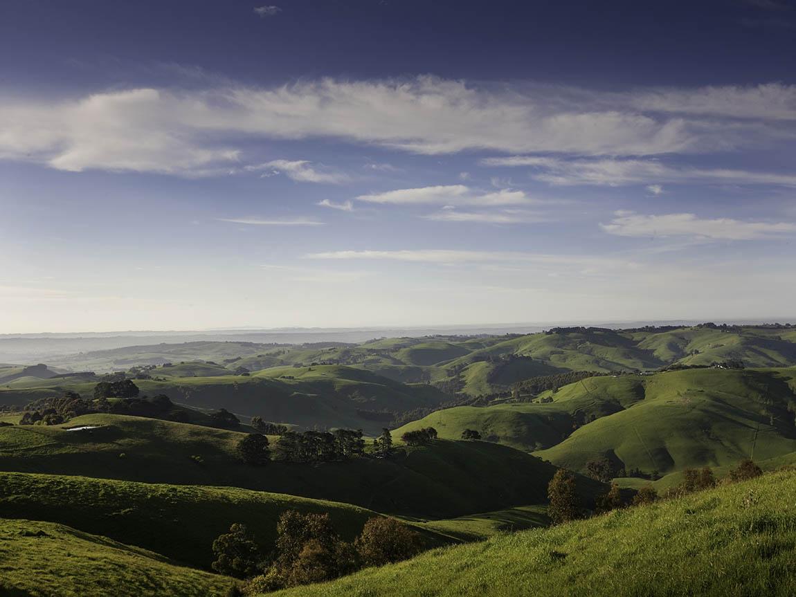 The Leongatha hills. Picture: Visit Victoria