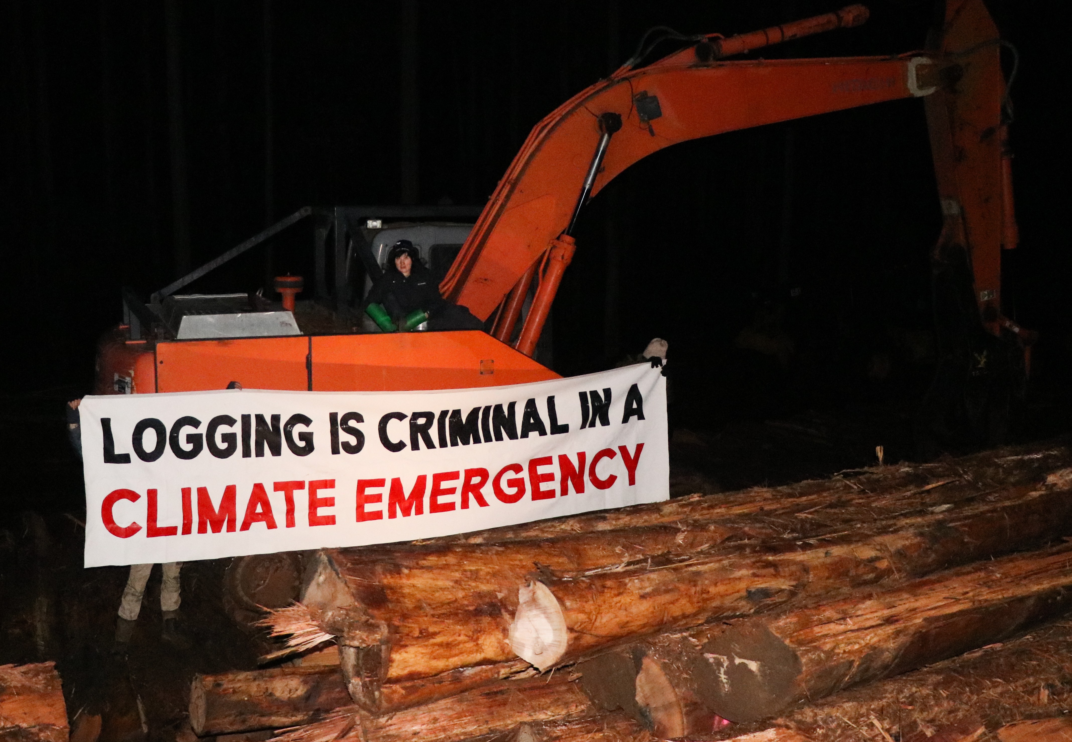 """Protect Warburton Ranges protester, Kim, chained herself to logging machinery, saying """"you can't trust governments to look after these beautiful places."""" Photo supplied: Protect Warburton Ranges."""