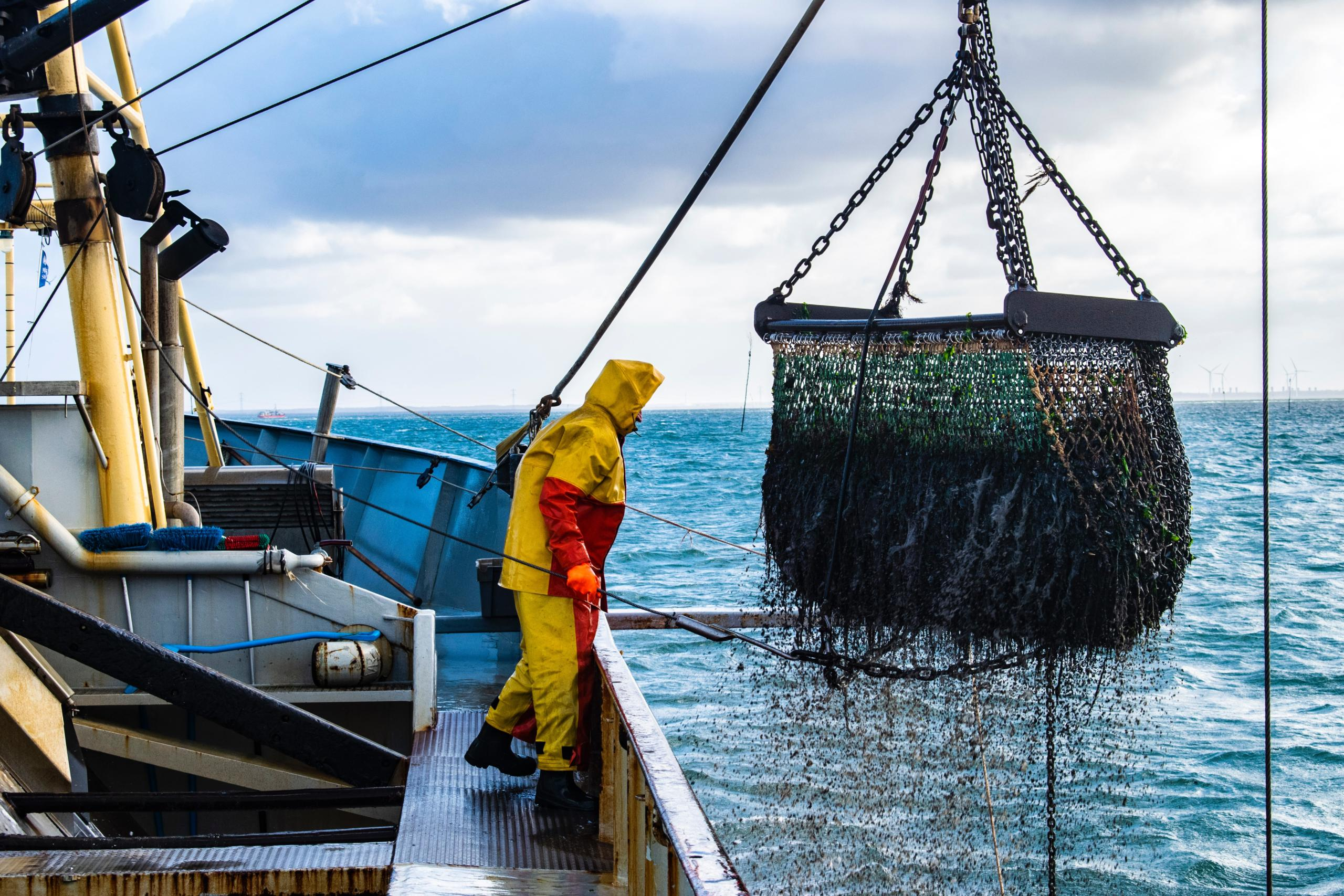 The pandemic has delivered a silver-lining as nations managing major fisheries have started to transition to long talked about e-monitoring and e-reporting systems. Photo credit: Unsplash