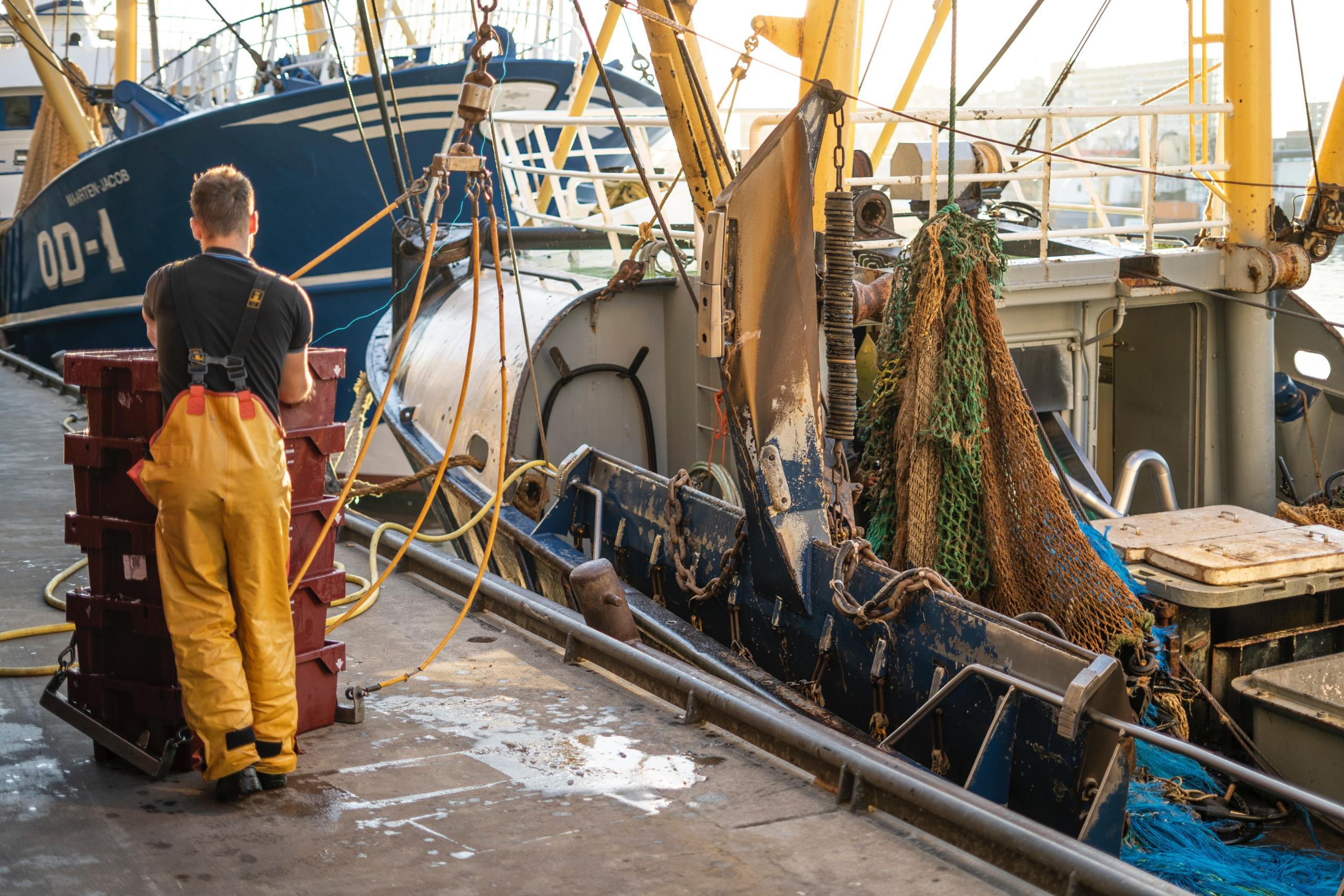 Pandemic leaves oceans vulnerable to increased illegal fishing